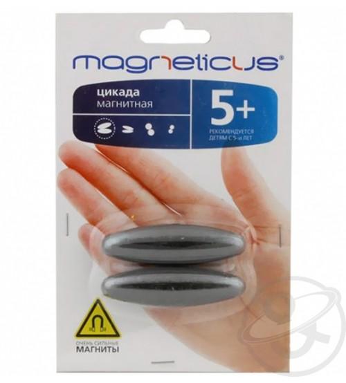 """Игра Magneticus (Магнетикус) """"Цикада"""" овал 16 мм"""